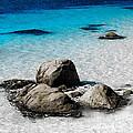 Rock Garden In Water by Tim Richards