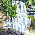 Rock Glen Falls Ontario Canada by Carol Wisniewski