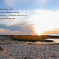Rock Harbor Quote by Michael DArienzo