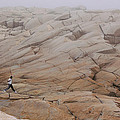 Rock Jogger At Peggy's Cove by Kyra Savolainen