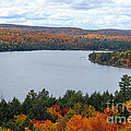 Rock Lake In Algonquin Park by Les Palenik