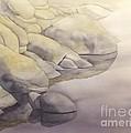 Rock Meets Water by Robert Hooper