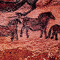 Rock Painting Of Tarpans Ponies, C.17000 Bc Cave Painting by Prehistoric