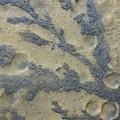 Rock Patterns On Mars by Nasa/jpl/university Of Arizona/science Photo Library