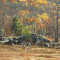Rock Pile In Maine Blueberry Field by Keith Webber Jr