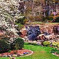Rock Quarry Garden by Lynne Jenkins