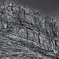 Rock Ridge 100 by Mark Myhaver