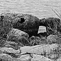 Rock Shoreline by Wesley Farnsworth
