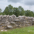 Rock Wall Steps by Kay Pickens