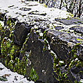 Rock Wall With Moss And A Dusting Of Snow Art Prints by Valerie Garner