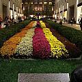 Rockefeller Center In Autumn by Dan Sproul
