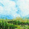 Rockefeller Coastal Marsh Louisiana  by Lizi Beard-Ward