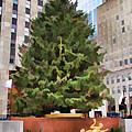 Rockefeller Tree by Alice Gipson