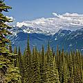 Rockies by Kathleen Bishop