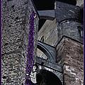 Rockin' Raven Celtic Rapunzel by Celtic Artist Angela Dawn MacKay