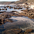 Rockpool by Rick Piper Photography