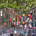 Rockport Fishing Net And Buoys by Susan Candelario
