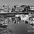 Rockport Harbor - Bw by Nikolyn McDonald