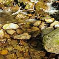Rocks Abound by Jim Southwell
