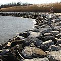 Rocks Along The Shore At Sandy Point by Ben Schumin