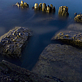 Rocks And Posts by Margie Hurwich