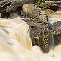 Rocks And Rapids by Stuart Litoff