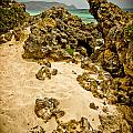 Rocks And Sand Of Elafonisi by Oleg Koryagin