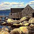 Rocks At Bay In Nova Scotia by Lydia Holly
