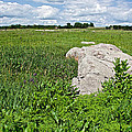 Rocks In A Tall Grass Prairie In Pipestone National Monument-minnesota by Ruth Hager