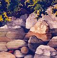 Rocks In Stream by Teresa Ascone