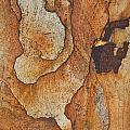 rocks 'IV by Milan Gonda