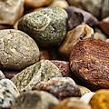 Rocks by Karol Livote