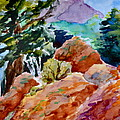 Rocks Near Red Feather by Beverley Harper Tinsley
