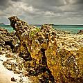 Rocks Of Elafonisi Island by Oleg Koryagin