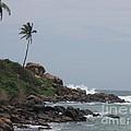 Rocks Of Kovalam Beach Kerala by Mini Arora