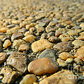 Rocks On My Path by Andrea Anderegg