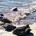 Rocks On The Bay by Mechala Matthews