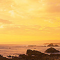 Rocks On The Coast, Mendocino by Panoramic Images