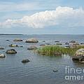 Rocks On The Baltic Sea by Ilkka Porkka