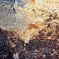 Rockscape 2 by Linda Bailey