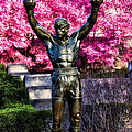Rocky Among The Cherry Blossoms by Bill Cannon