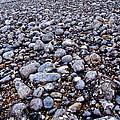 Rocky Beach Normandy France by Jeff Black