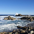 Rocky Beach On 17 Mile Drive by Barbara Snyder