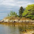 Rocky Coast In Maine by DejaVu Designs
