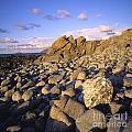 Rocky Coast. Normandy. France. Europe by Bernard Jaubert