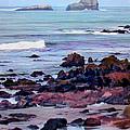 Rocky Coast Off San Simeon by Elaine Plesser