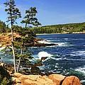 Rocky Coastline by Dave Files