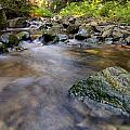 Rocky Creek by James Wheeler