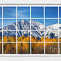 Rocky Mountain Autumn High White Picture Window by James BO  Insogna