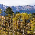 Rocky Mountain Autumn by Steve Krull